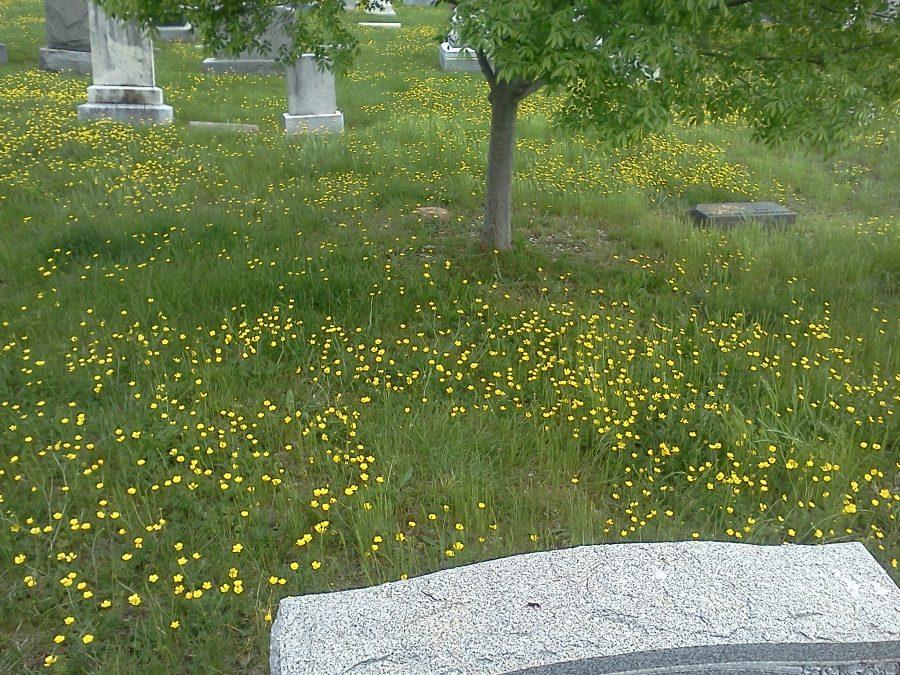 Grave of William Gardner