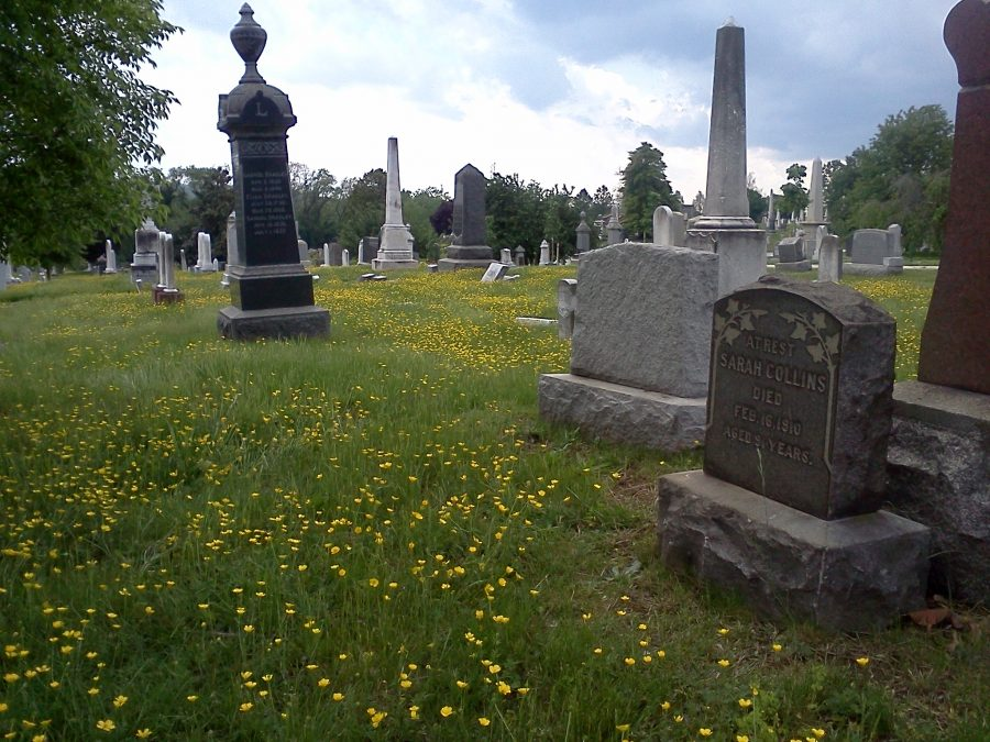 Gardner plot, Congressional Cemetery