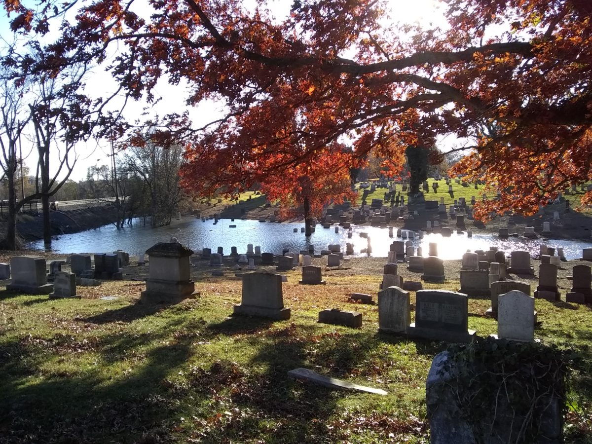 The cemetery, flooded