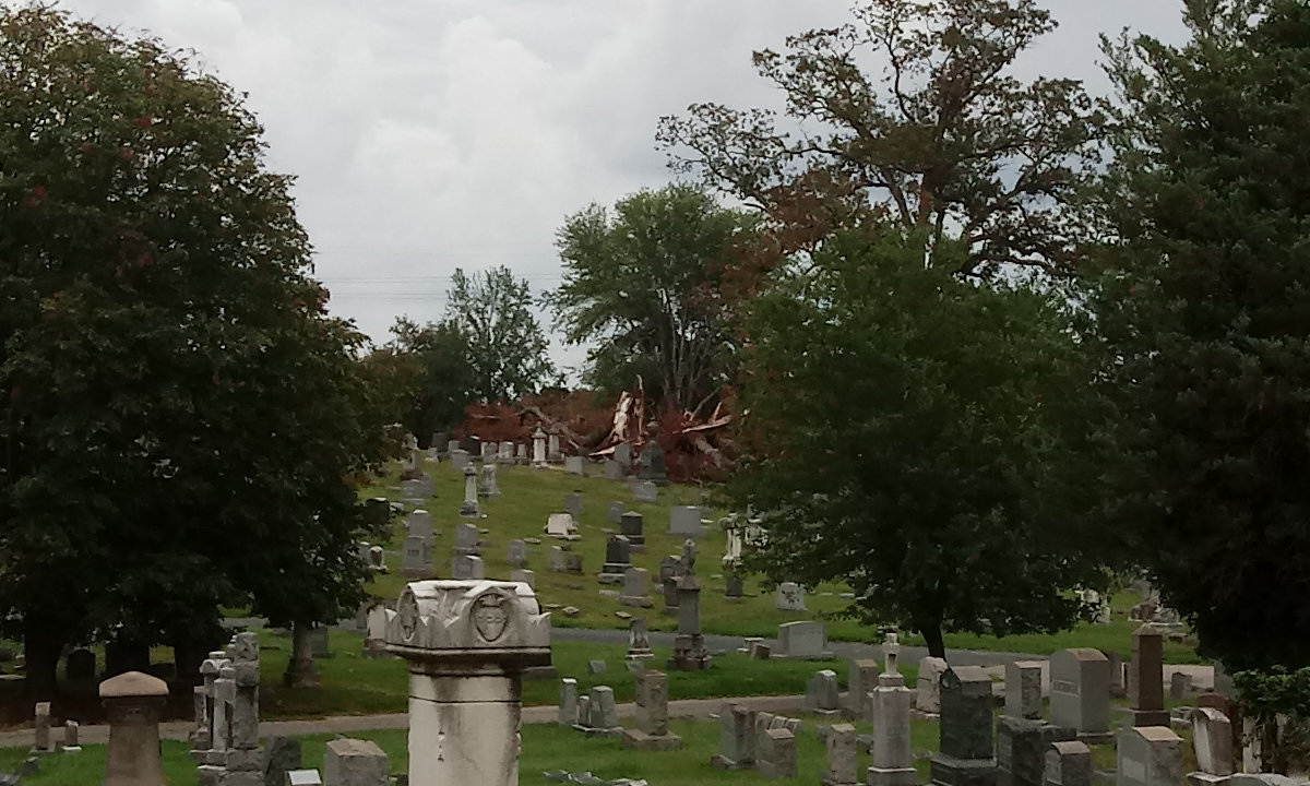 Looking across the cemetery, a shattered tree's stump and branches